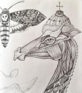 Moleskin sketch